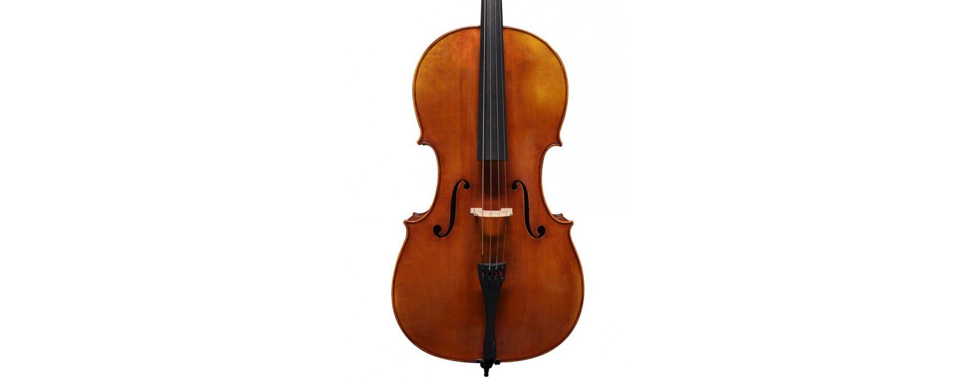Violončelá